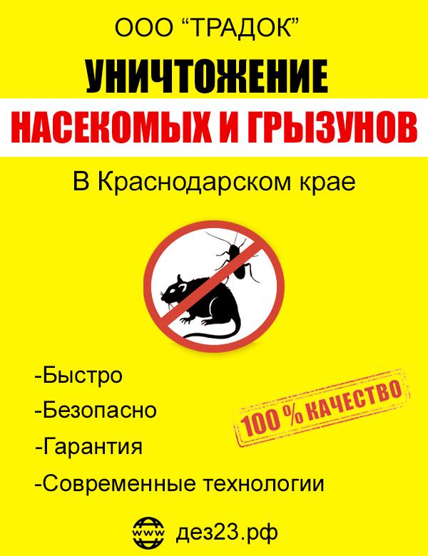 Уничтожение тараканов, клопов, мышей, с гарантией